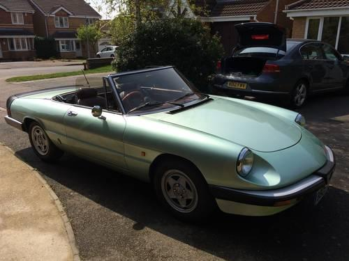 1985 Alfa Romeo Spider for sale